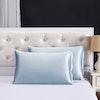 19 Momme Terse Envelope Silk Pillowcase Color