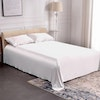 19 Momme Seamless Silk Flat Sheet Color