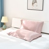 30 Momme Terse Envelope Silk Pillowcase Ultra Luxury Color