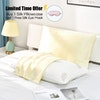 19 Momme Terse Silk Pillowcase With Hidden Zipper Color